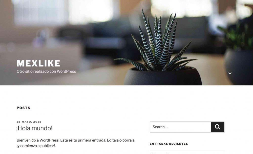 Sitio web inicial creado con wordpress
